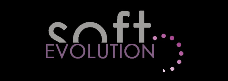 Softevolution s.l.
