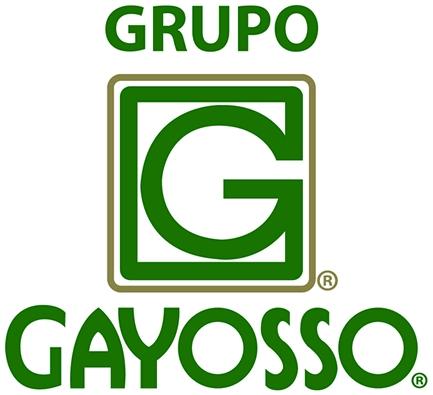 Grupo Gayosso s.a. de c.v.