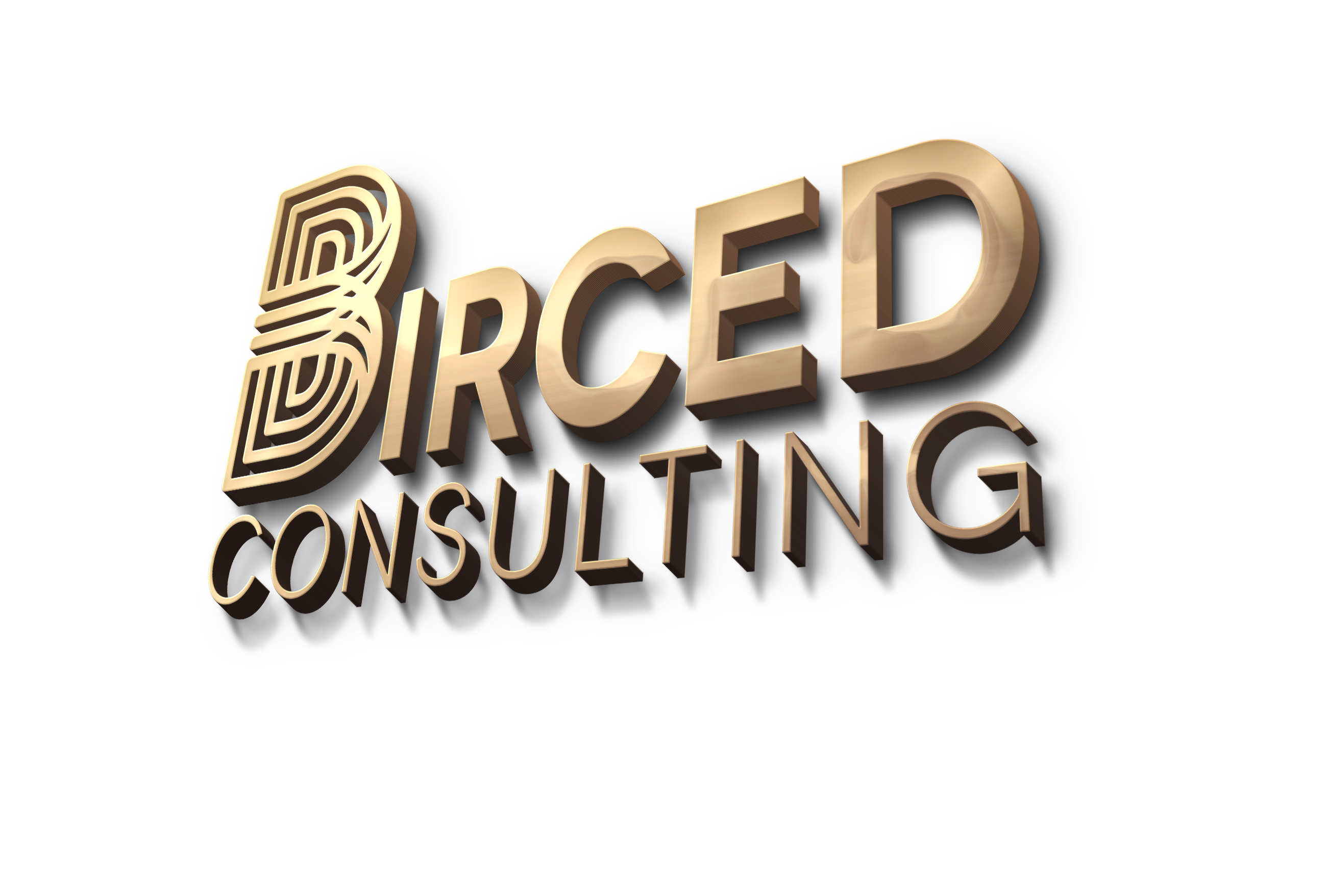 Birced Consulting