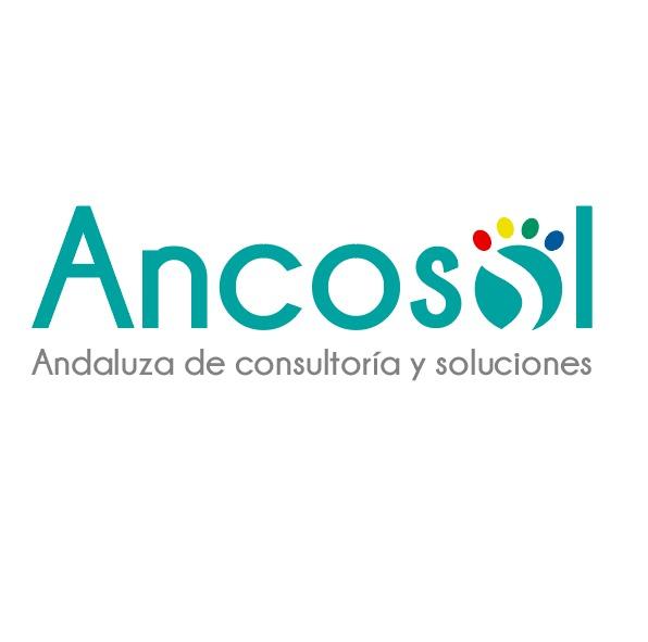 Andaluza de Consultoría y Soluciones, s.l.