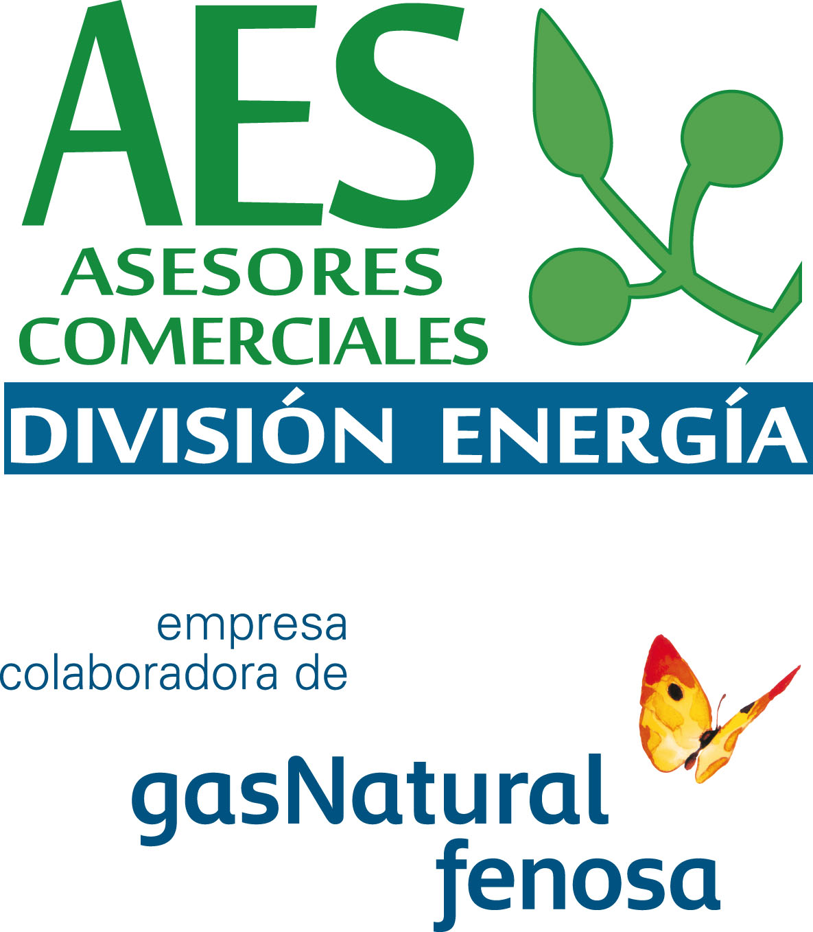 Aes Asesores